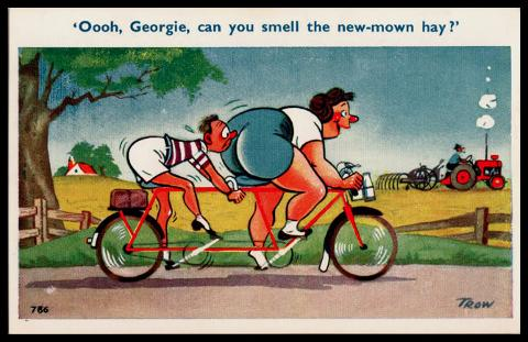 Smell the New Mown Hay Cycling postcard Trow Saucy Seaside Humour Tandem Bike memorabilia
